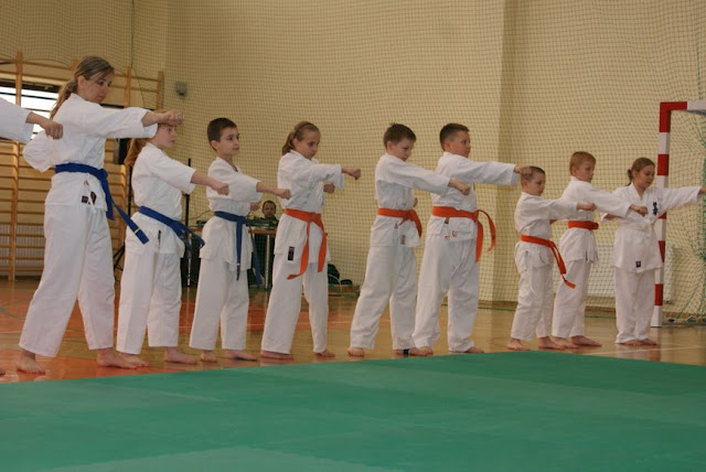DO 2011 Pokaz karate - DSC00079_1.JPG