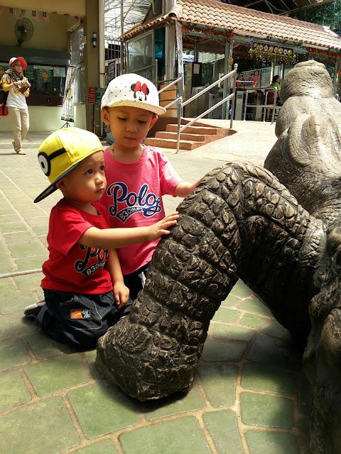 Zoo Taiping Night Safari Taiping