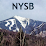 NYSkiBlog's profile photo