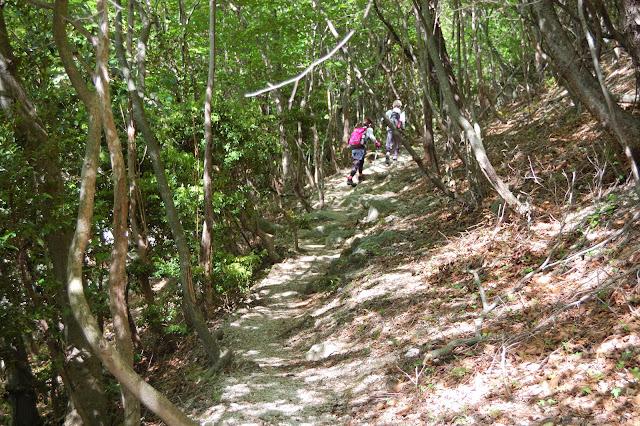鎌ヶ岳または御在所岳登山道の写真