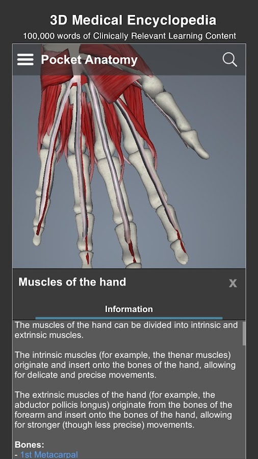 Pocket Anatomy Pro- screenshot