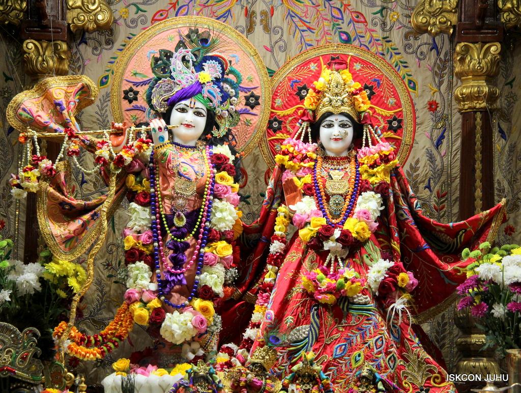 ISKCON Juhu Sringar Deity Drashan on 17th Jan 2017 (21)