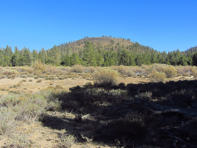 another cinder cone