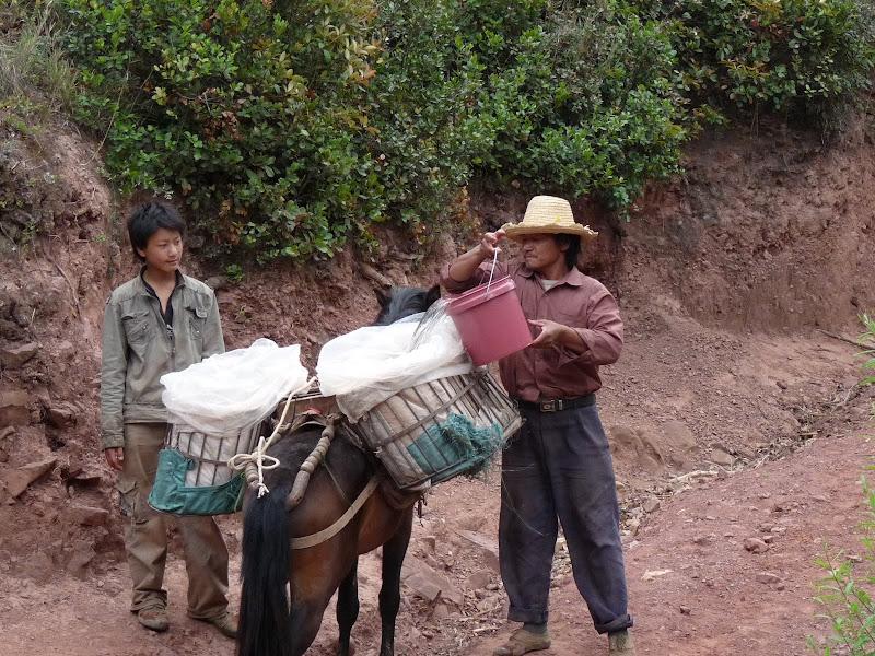 ils chargent de l eau pour arroser leurs plantations