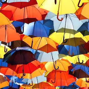 umbrellas by Malinov Photography - City,  Street & Park  Street Scenes ( umbrellas, color, street, umbrella, agueda, portugal )