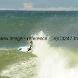 _DSC0247.thumb.jpg