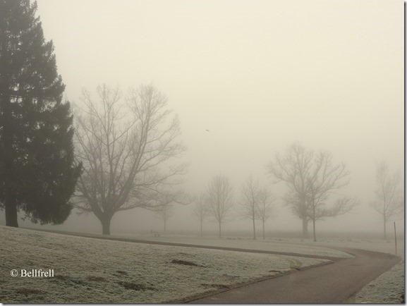 Aufbruch im Nebel 2