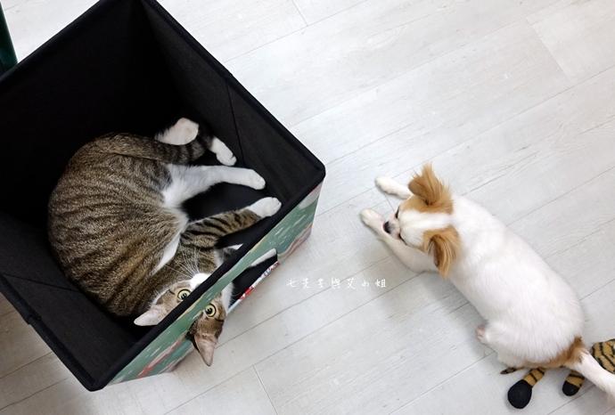 4 isufu舒福家居 寵物窩 收納椅凳