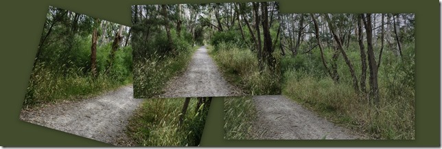 The Suburban Bush Track 8 Reserve Perspective collage