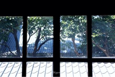 台湾旅行 台北 華山1914文創園区