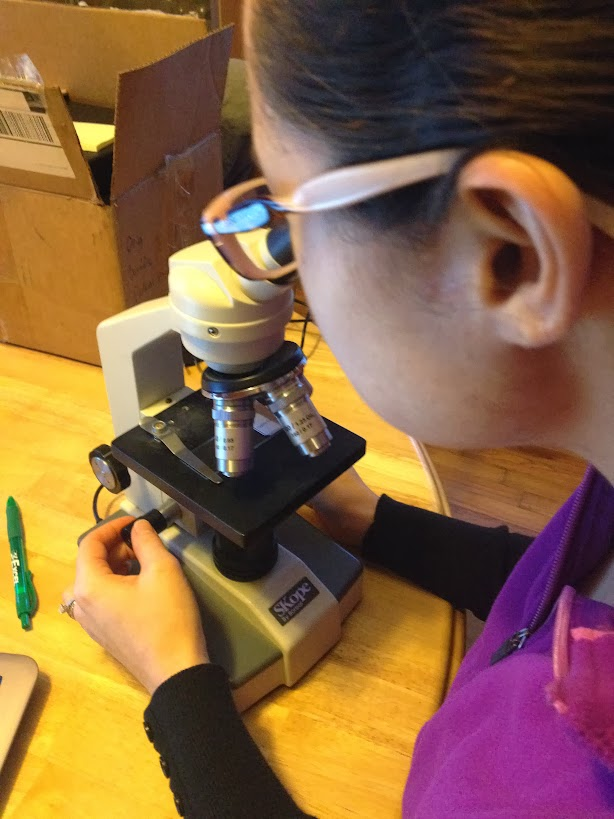 Microscope for anatomy and physiology I lab