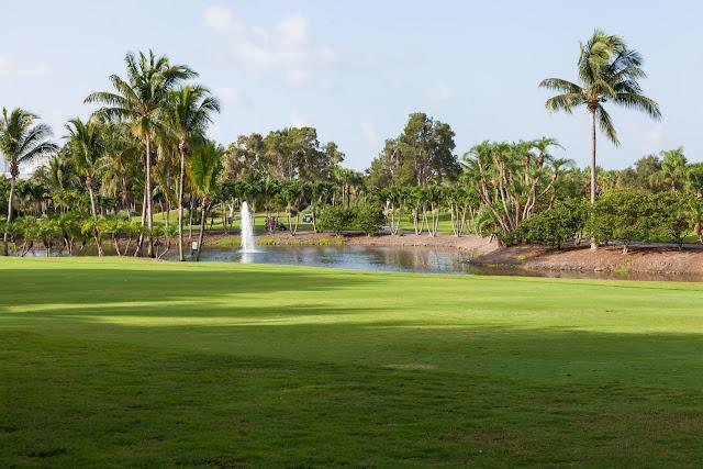 2015 Golf Tournament - 2015%2BLAAIA%2BConvention-1462.jpg