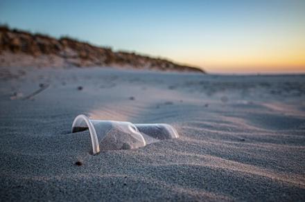 WWF : Χιλιάδες πλαστικά στις ελληνικές παραλίες - 925 σκουπίδια ανά 100 μέτρα