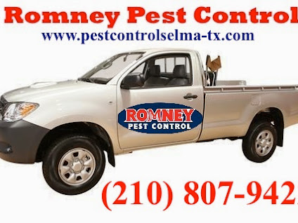 Romney Pest Control Selma Tx Photo