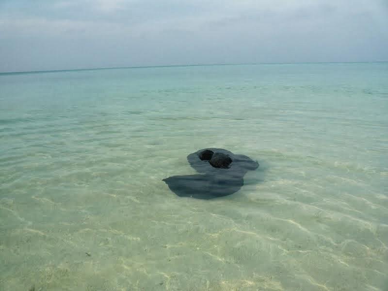 Кто слышал о Vacation Home на Thodoo?