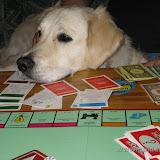 Gram w Monopol (17.05.2009)