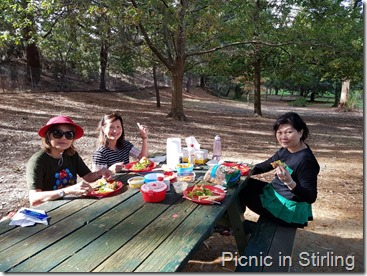 Picnic in Stirling