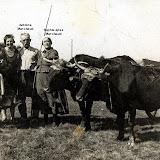 1947_campagne.jpg