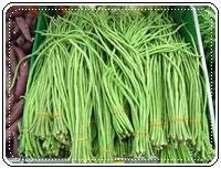 คำศัพท์ภาษาอังกฤษ_long bean_Vegetable