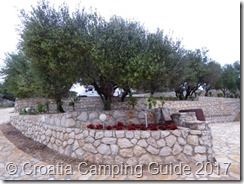 Croatia Camping Guide - Camp Kanić Terraces