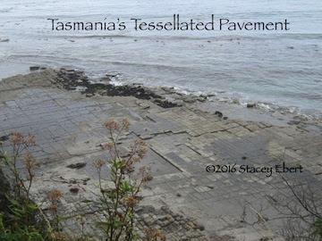 Tasmania's Tessellated pavement - from Through the Eyes of an Educator: Hobart, Tasmania, Australia