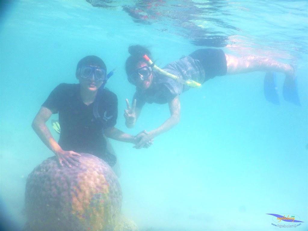 pulau pari, 23-24 mei 2015 40