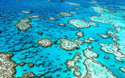 Αργοπεθαίνει ο Μεγάλος Κοραλλιογενής Ύφαλος στην Αυστραλία