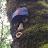 Kenneth Johnson avatar image