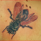 fly - tattoos for women
