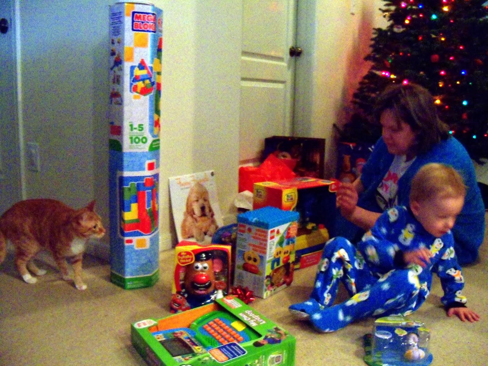 Christmas 2013 - 115_9791.JPG