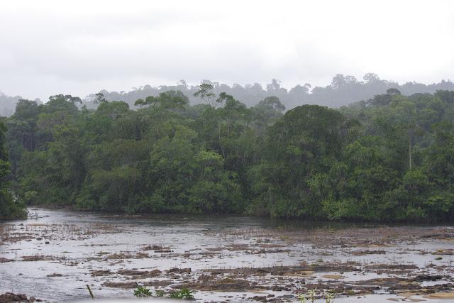 Pluie sur Saut Athanase. Approuague (Guyane), 6 novembre 2012. Photo : J.-M. Gayman