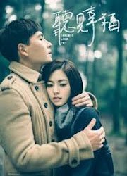 Someone Like You Taiwan Drama