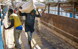 Rice millers to shut down plants over looting and destruction of mills by hoodlums