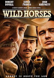 Wild Horses - Bầy ngựa hoang