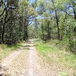 Sid Pulsford walking trail (236993)