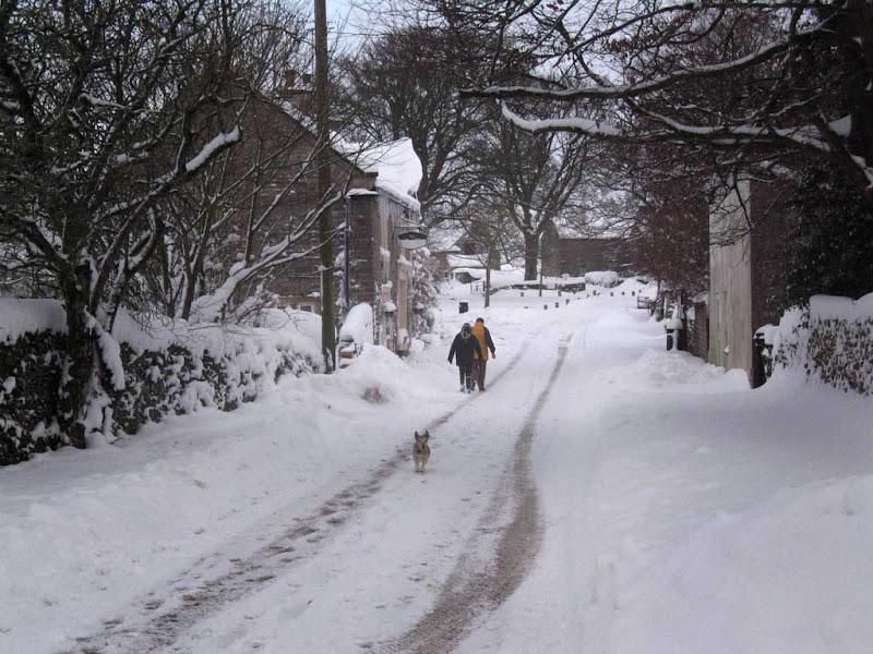 SnowBR13