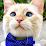 Mark Kreafle (TheShoctor)'s profile photo