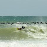 _DSC9564.thumb.jpg