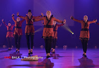Han Balk Voorster dansdag 2015 avond-4539.jpg