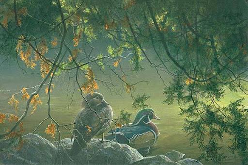 bateman_on_the_pond_wood_ducks.jpg