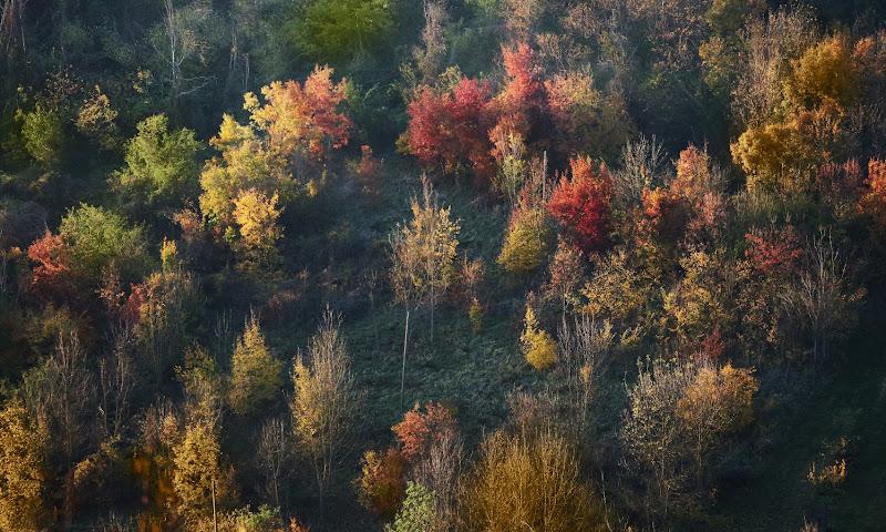 Scorcio d'autunno di MauroV