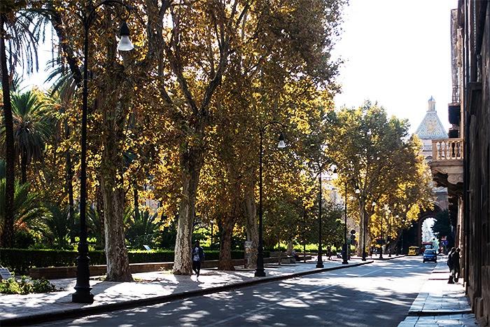 Palermo19.jpg