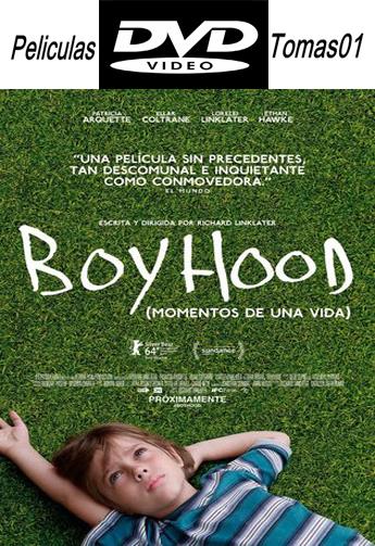 Boyhood: Momentos de una vida (2014) DVDRip