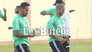 Rajevac décide de compter sur Guedioura face au Cameroun