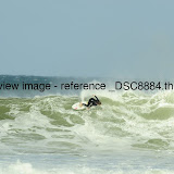 _DSC8884.thumb.jpg