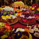 HTW Navrathri Celebrations 2015
