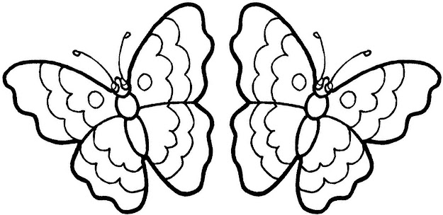 Butterfly Colouring Images Coloring Pages