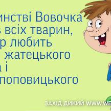 Анекдоти про Вовочку (багато)