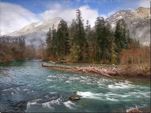Elwha River, Olympic National Park, Washington.jpg