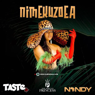 MP3 AUDIO | Nandy (Nandi) Nand – Unani, Bebi, baby, bebe, nime nimekuzoea, nmekuzoea, ndani, kazoea, Nakupenda (Mp3 Download)